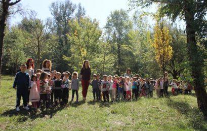 """Piknik te kodrat e liqenit nga fëmijët e parashkollorit me temë: """"Vëzhgojmë stinën e vjeshtës"""""""