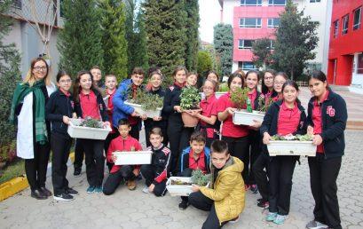 Klasat e 6-ta mbjellin lule