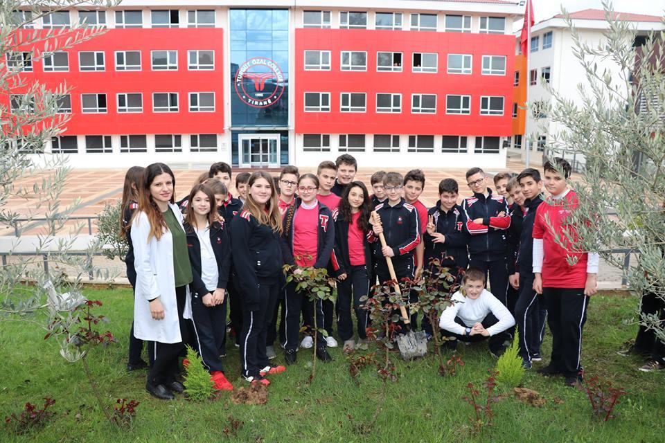 Klasa e 6E mbjell pemë në oborrin e shkollës