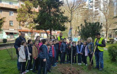 Klasa e 3F mbolli pemën e klasës